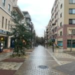 仲町台駅前の並木道